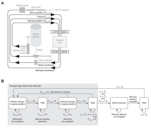 small resolution of schematic and flow diagram