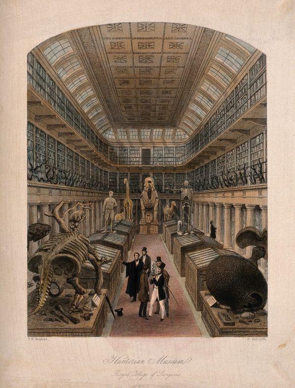 John Hunter - Scientist Of Day Linda Hall Library