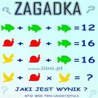 Zagadka - równania