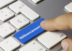 referencement professionnel