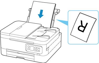 Canon : Inkjet Manuals : TR7000 series : Loading Plain