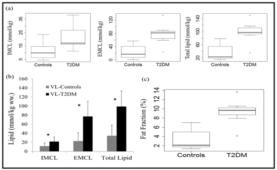 Skeletal muscle lipid quantification in lean and diabetic