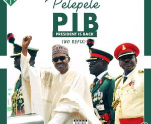 Pelepele - President Is Back