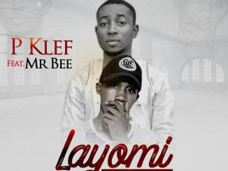 Pklevf ft. Mr Bee - Layomi