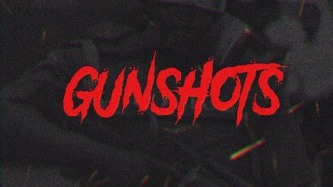 Download Vector GunShots