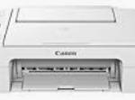 Canon Pixma TS3165 Driver Download