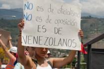 Fotografías del banderazo en Mérida - 041014 (11)