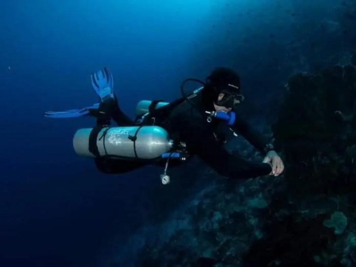 Tribuana Dive Center Harga Promo 2021 Di Traveloka Xperience