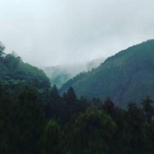 雨の日に山向こうを眺めていると、まるで深山にいるみたいです。#蔵 #筏 #ikada #japan #Tokyo #mitake #御岳 #御岳山 #mitakesan #御岳山ロックガーデン #武蔵御嶽神社 #多摩川 #御岳渓谷 #奥多摩 #ブドウ山椒 #おにぎり#tasty #バイク #ロードバイク #カヌー #カヤック #リバーSUP #デッドエンド #ジムニー #JA22 #ペット可