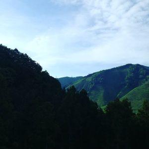 今日は17時からご予約のお客様。いつもより長い一日になりそうです。貸し切りではないので、皆様もwelcomeですhttp://ikadamitake.com#炭鳥 #蔵 #筏 #ikada #Tokyo #mitake #御岳 #御岳山 #mitakesan #御岳山ロックガーデン #武蔵御嶽神社 #多摩川 #御岳渓谷 #奥多摩フィッシングセンター #奥多摩 #ブドウ山椒 #おにぎり #味玉 #tasty #バイク #ロードバイク #カヌー #カヤック #リバーSUP #デッドエンド #ジムニー #ペット可 #朝の空