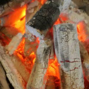 昨日の御岳、半袖でも汗ばむくらい。今日の御岳、薄手のフリースを着て開店準備。皆さまの周りはどうですか?寒暖の差が激しい今日この頃、どうぞご自愛下さいませ http://ikadamitake.com営業時間11~17時木曜定休(祭日は営業)#炭鳥 #蔵 #筏 #ikada #Tokyo #mitake #御岳 #御岳山 #mitakesan #御岳山ロックガーデン #武蔵御嶽神社 #多摩川 #御岳渓谷 #奥多摩フィッシングセンター #奥多摩 #ブドウ山椒 #おにぎり #味玉 #tasty #バイク #ロードバイク #カヌー #カヤック #リバーSUP #アルパインクライミング #デッドエンド #ジムニー #ペット可  #炭火