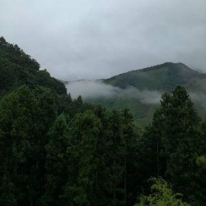 台風の来る朝、谷間の雲の形がいつもと違いましたhttp://ikadamitake.com 営業時間11~17時(夏季)木曜定休(祭日は営業)※むかし鳥、ばくだんは数に限りがございます。1個からお取り置き致します♪Tel.0428-85-8726#炭鳥 #蔵 #筏 #ikada #むかし鳥 #mitake #tokyo #御岳 #御岳山 #御岳山ロックガーデン #武蔵御嶽神社 #多摩川 #御岳渓谷 #ランチ #奥多摩フィッシングセンター #奥多摩 #ブドウ山椒 #おにぎり #味玉 #バイク #ロードバイク #カヌー #カヤック #リバーSUP #ラフティング #デッドエンド #ジムニー #ペット可 #台風12号