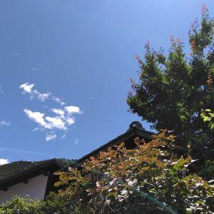 今日は昨日と打って変わって、夏の様な日差しですhttp://ikadamitake.com営業時間・4月〜12月 11〜17時1月〜3月 11〜16時金曜定休(祭日は営業)※むかし鳥、ばくだんは数に限りがございます。1個からお取り置き致します♪Tel.0428-85-8726#むかし鳥 #体験型 #炭鳥ikada #ばくだん #bbq #mitake #御岳 #御嶽駅 #御岳山 #御岳山ロックガーデン #武蔵御嶽神社 #御岳神社 #御岳渓谷 #東京アドベンチャーライン #御岳ランチ #奥多摩フィッシングセンター #奥多摩 #日原鍾乳洞 #イマタマ #バイク #ロードバイク #サイクリング #カヌー #カヤック #ラフティング #riversup #デッドエンド #ペット可