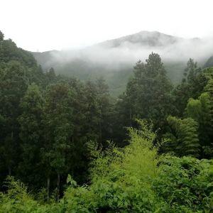 今回の大雨で、九州をはじめとした各地で被害に遭われた方々、心細い思いをなさっている方々に、心よりお見舞いを申し上げます。#九州大雨 #九州豪雨