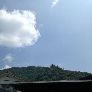 東京でも、やっと梅雨明けしました️昨年より30日遅いのだとかhttp://ikadamitake.com 営業時間4月から12月 11~17時1月から3月 11~16時金曜定休(祭日は営業)※むかし鳥、ばくだんは数に限りがございます。1個からお取り置き致します♪Tel.0428-85-8726#むかし鳥 #体験型 #炭鳥ikada #ばくだん #mitake #御岳 #御岳山 #御岳山ロックガーデン #武蔵御嶽神社 #御岳神社 #御岳渓谷 #東京アドベンチャーライン #御岳ランチ #奥多摩フィッシングセンター #奥多摩 #日原鍾乳洞 #イマタマ #バイク #ロードバイク #カヌー #カヤック #リバーSUP #ラフティング #御岳ボルダー #ペット可 #梅雨明け