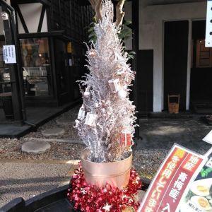 2年前に @egamin.1228 さんに頂いたコニファーの #クリスマスツリー ゴメンナサイ、手入れがヘタで枯らしてしまいましたでも️今年は店主が銀色のスプレーで #リメイク #シルバーツリー もなかなか素敵です️入口のご案内テーブルに飾っています雨や雪の時は、下屋のカウンターに飾ります皆さま、ご来店の際はどうぞご覧下さいませ🤗http://ikadamitake.com 営業時間4月から12月 11~17時1月から3月 11~16時金曜定休(祭日は営業)Tel.0428-85-8726#むかし鳥 #体験型 #炭鳥ikada #ばくだん #mitake #御岳 #御岳山 #御岳山ロックガーデン #武蔵御嶽神社  #御岳渓谷 #御岳ランチ #奥多摩 #イマタマ #バイク #ロードバイク #カヌー #カヤック #リバーSUP #ラフティング #御岳ボルダー #ペット可