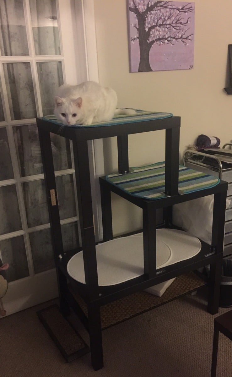 Split Level Lack Cat Quot Tree Quot Ikea Hackers