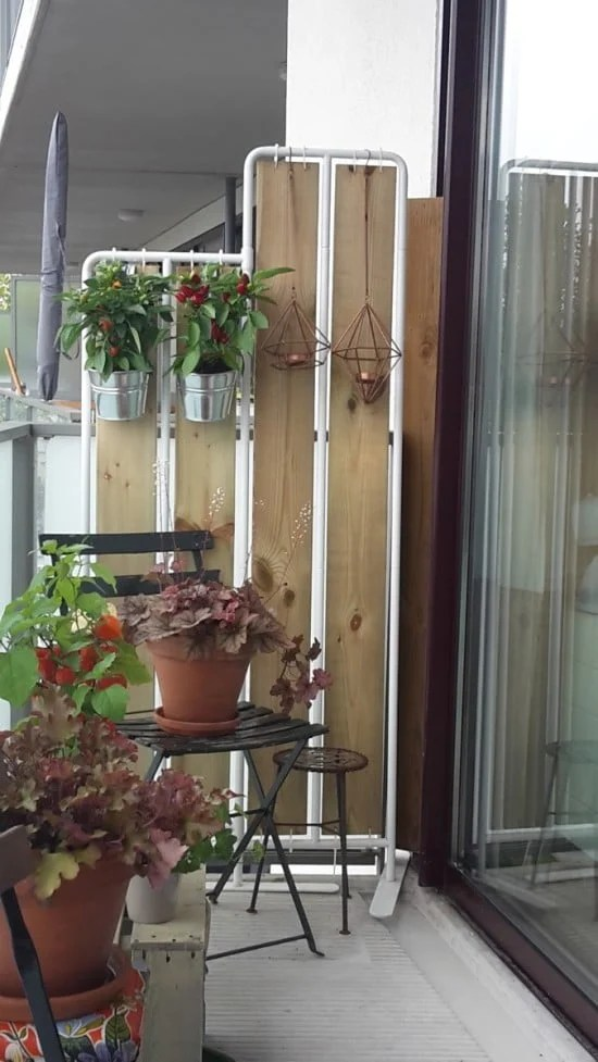 plant screen-1
