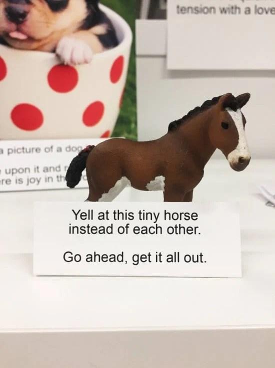 yell-at-me-horse