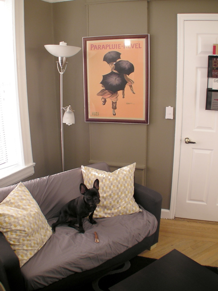 Study And Dog Room Remodel Ikea Hackers