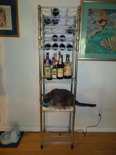 Kitty Food And Bar Ikea Hackers