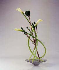 松とカラーの自由花