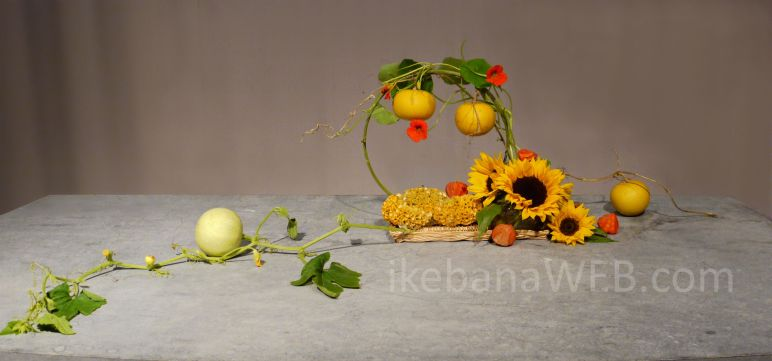 Morimono ikebana arrangement in automne colors. Pumpkins, physalis, sunflowers. By Ekaterina Seehaus. Sogetsu school of ikebana.