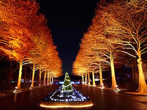 クリスマス 大阪 デート おすすめ スポット4