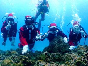 12月 沖縄 旅行 気温 服装 イベント、3