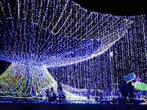 12月 沖縄 旅行 気温 服装 イベント、6