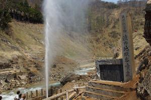 猿 温泉 サル スポット 地獄谷温泉 長野県 2