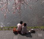 春の東京でおすすめなデートのスポットをランキングでご紹介!