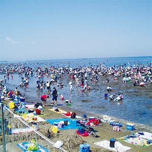 潮干狩り 関東 おすすめ スポット 人気 穴場 3