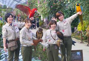 雨の日 神戸 デート 人気 スポット 2
