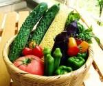 夏の食べ物!旬な食べ物をランキングでご紹介! 魚や野菜が人気?