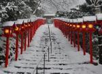 1月は京都府へ旅行!気温や服装、観光におすすめなスポットは?