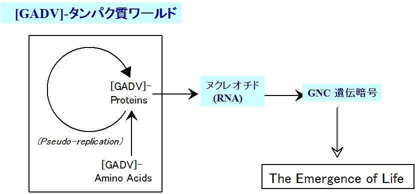 [GADV]-タンパク質ワールド仮説(略して、GADV 仮説)