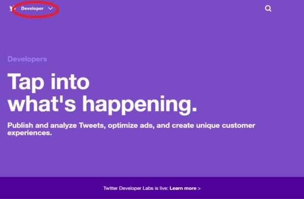 Twitter APIに登録してみた~申請に通過したやり取りを掲載~