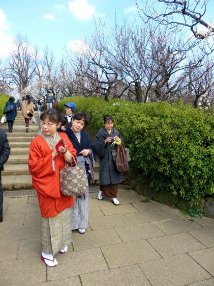 setagaya-plum-festival-hanegi-park-6