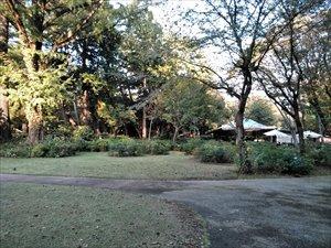 西洋庭園はバリアフリー