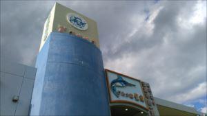 車椅子で行く三浦半島~三崎生鮮ジャンボ市 バリアフリー情報