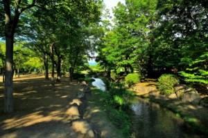 古戦場跡のシンボルが「八幡社