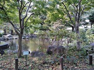 日本庭園のバリアフリー状況