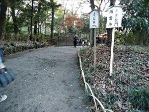 明治神宮の森