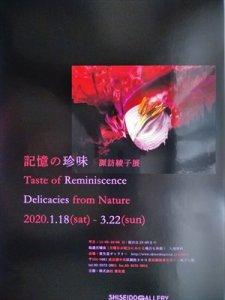 銀座資生堂ギャラリー「記憶の珍味 諏訪綾子展」車椅子観覧ガイド