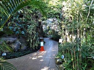 茨城県植物園 車椅子利用ガイド バリアフリー情報