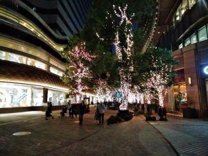 東京ミッドタウン日比谷 2020イルミネーション