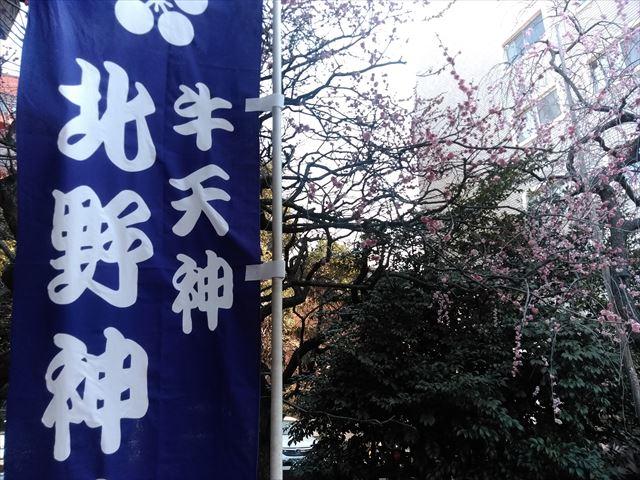 牛天神北野神社 第三十九回紅梅まつり バリアフリー情報
