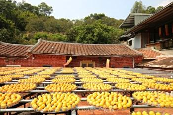 新埔金漢柿餅教育園區 新竹隱藏版景點,古法曬柿子超美,秋季限定美景!一日遊行程分享