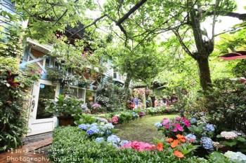 南庄山芙蓉咖啡藝廊| 苗栗景點遺落在繽紛花園的繡球花,靜謐賞繡球花必訪去處